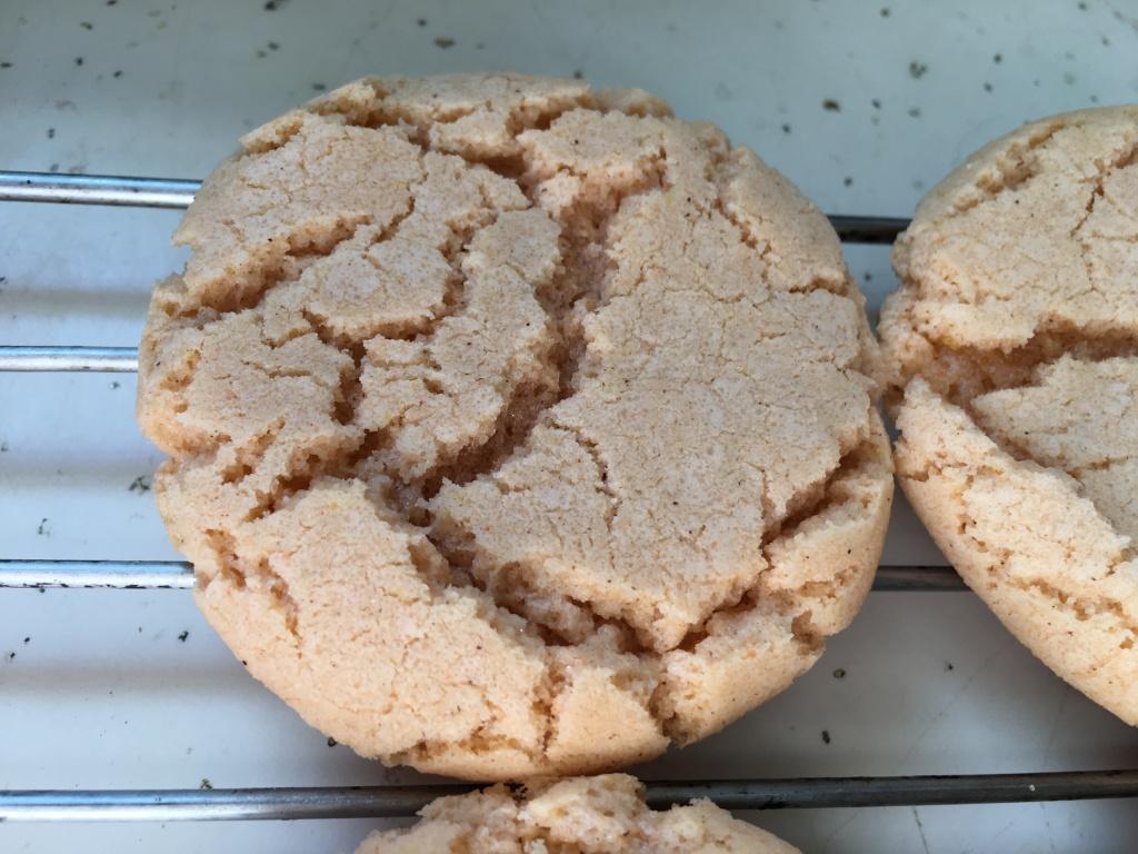Orange ginger cinnamon cookies